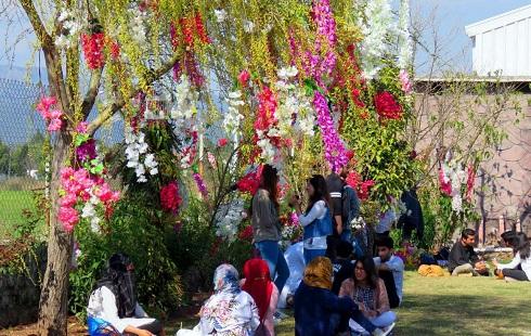 فستیوال رنگ بازی در پاکستان