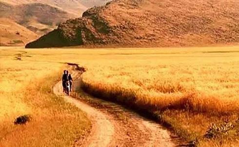 فيلم اکران نشده کيارستمي باد ما را خواهد برد
