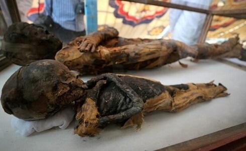 کشف اجساد مومیایی در مقبره باستانی مصر