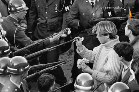 عکس قدیمی,قدرت گل,جنگ ویتنام