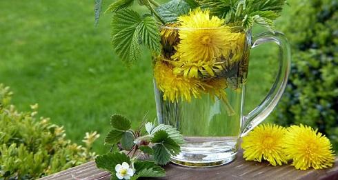 دمنوش گل قاصدک