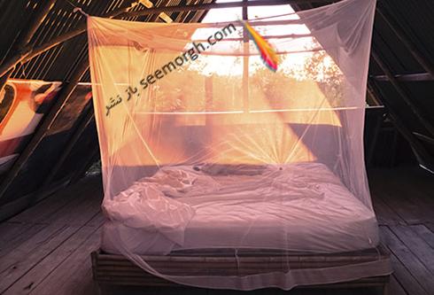 mosquito_netting.jpg