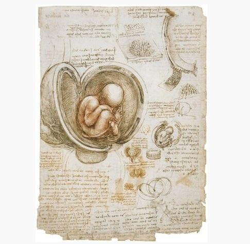 طراحیهای دست لئوناردو داوینچی