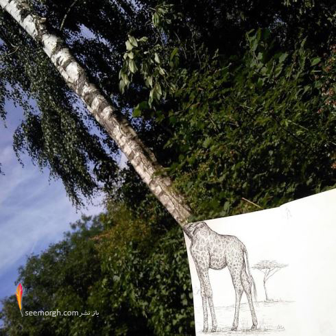 نقاشی,نقاشی خلاق,نقاشی جالب,طراحی,Lois Low
