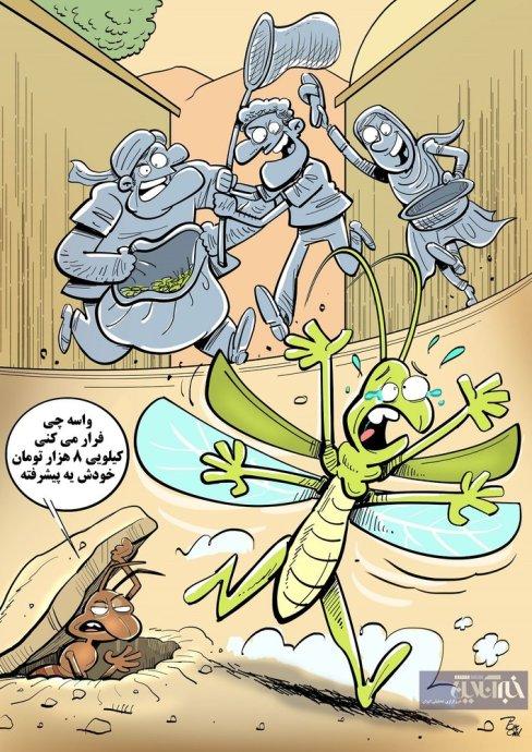 وضعیت ملخ ها در ایران