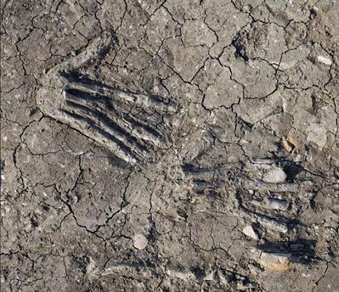 کشف دست های غول پیکر در مصر