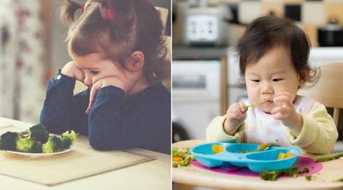 تغذیه کودکان