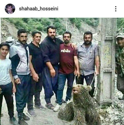 شهاب حسینی,سواد کوه,کشتن توله خرس