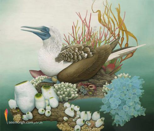 نقاشی,سورئال,Tiffany Bozic