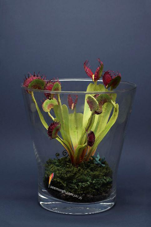 اوریگامی,اریگامی,هنر کاغذی,کار با کاغذ,دکور کاغذی,حشرات,Tina Kraus