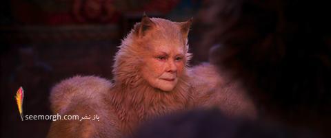 فیلم گربه ها,cats,جودی دنچ