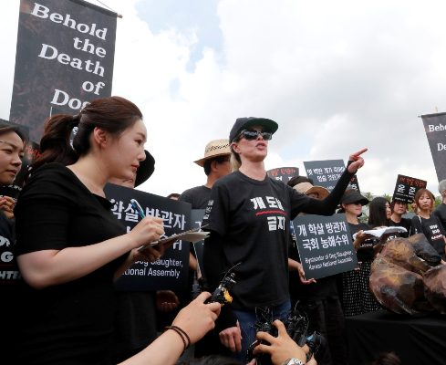 سخنرانی کیم بیسینگر در بین معترضان