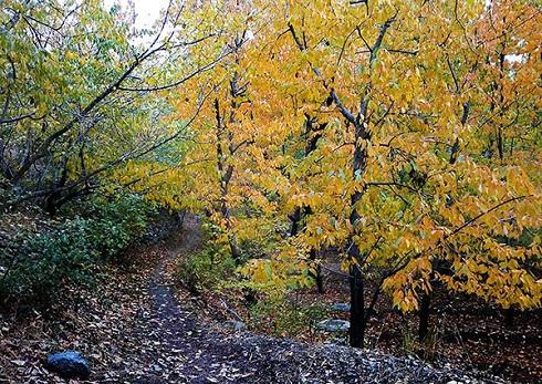 طبیعت اطراف تهران,آخر هفته اطراف تهران کجا برویم,کوهنوردی در اطراف تهران