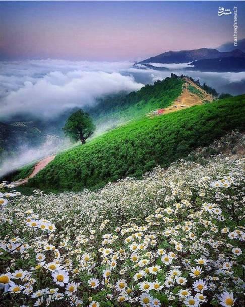 عکس زیبا از ماسال گیلان