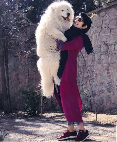مریم معصومی و بغل کردن یک سگ