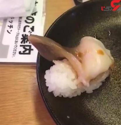 حرکت کردن سوشی در بشقاب