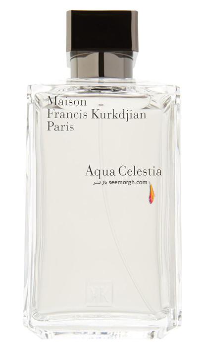 Aqua-Celestia-Forte-Eau-de-Parfum-Best-Summer-perfume.jpg