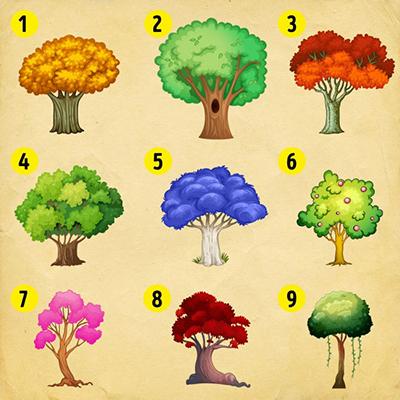 برای شناخت شخصیت خود یکی از 9 درخت زیر را انتخاب کنید