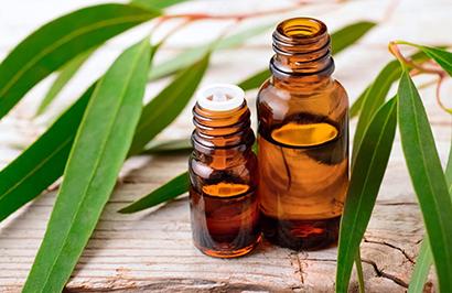 درمان سرفه با روغن اکالیپتوس,درمان سرفه با کمک 4 روغن طبیعی