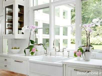 پنجمین اصل فنگ شویی : قرار دادن گیاهان طبیعی و خانگی در فضای آشپزخانه,فنگ شویی آشپزخانه