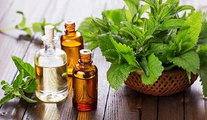 درمان سرفه با روغن نعناع,درمان سرفه با کمک 4 روغن طبیعی