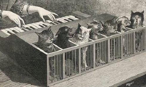 پیانو گربه ای