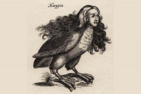 موجود افسانه ای نیمی انسان و نیمی پرنده