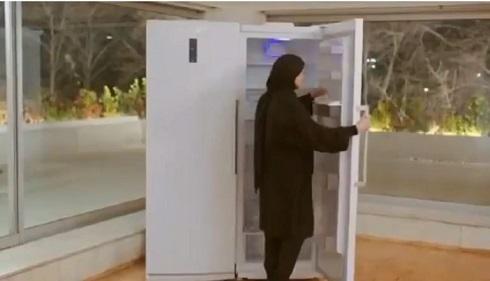 حضور لیلا حاتمی در تیزر تبلیغاتی یخچال