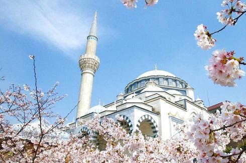 مسجد توکیو (ژاپن)