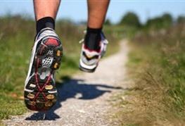 هر روز وقت ورزش ندارید
