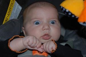 تولد بزغاله ای با صورتی شبیه به نوزاد انسان!! + عکس