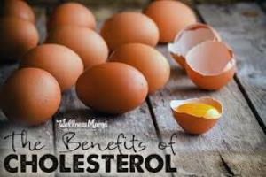 فواید کلسترول بد LDL