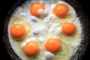 فواید تخم مرغ برای بدن
