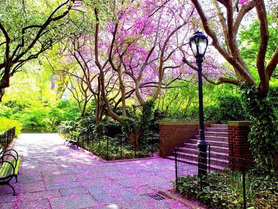 عکس هایی زیبا به مناسبت فصل بهار