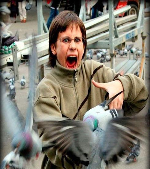 حمله پرنده ها به زن