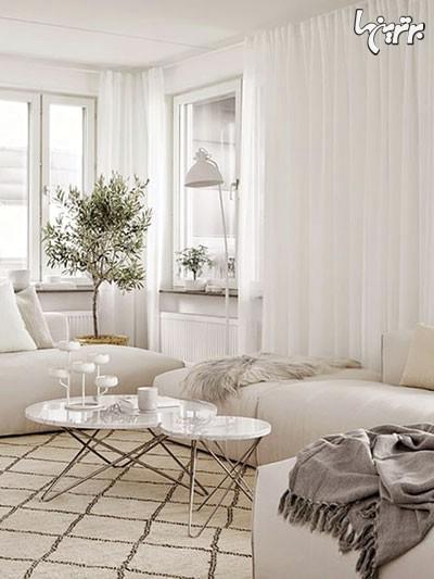اگر فضای خانه تان بزرگ است از گلدان های مجلل و بزرگ استفاده کنید