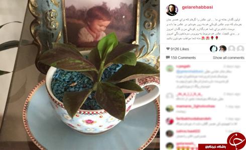 گلدان خانه ی گلاره عباسی