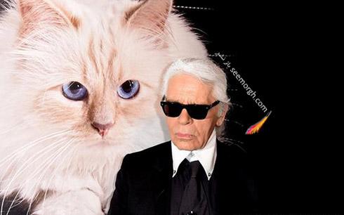 مدل عینک کارل لاگرفلد Karl Lagerfeld