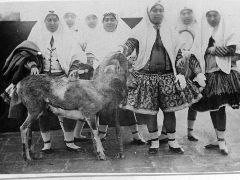 عکس زنان حرمسرای ناصرالدین شاه