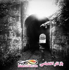 تونل جیغ زن