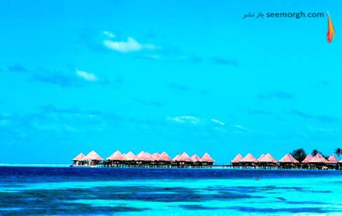 واحد پول مالدیو , روفیه مالدیو است