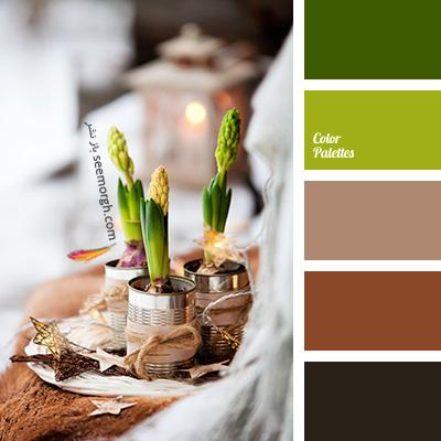 بهترین ترکیب رنگی با رنگ قهوه ای برای یک دکوراسیون رنگی شاد - ترکیب شماره 7