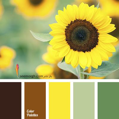بهترین ترکیب رنگی با رنگ قهوه ای برای یک دکوراسیون رنگی شاد - ترکیب شماره 6