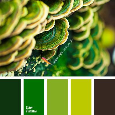 بهترین ترکیب رنگی با رنگ قهوه ای برای یک دکوراسیون رنگی شاد - ترکیب شماره 2