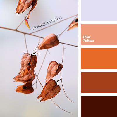 بهترین ترکیب رنگی با رنگ قهوه ای برای یک دکوراسیون رنگی شاد - ترکیب شماره 3