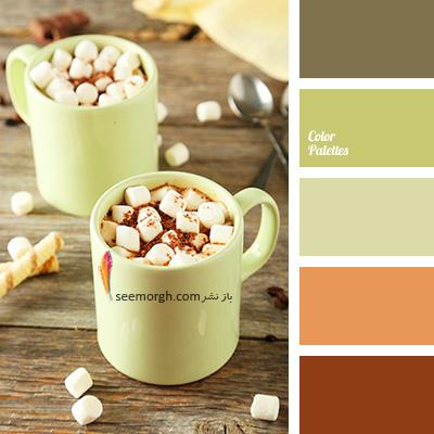 بهترین ترکیب رنگی با رنگ قهوه ای برای یک دکوراسیون رنگی شاد - ترکیب شماره 5
