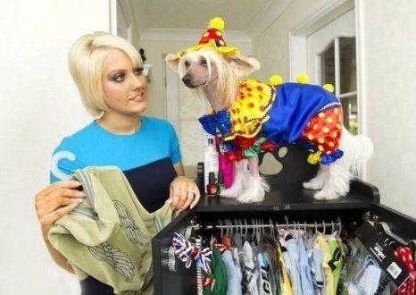 کمد لباس های سگ خوش شانس