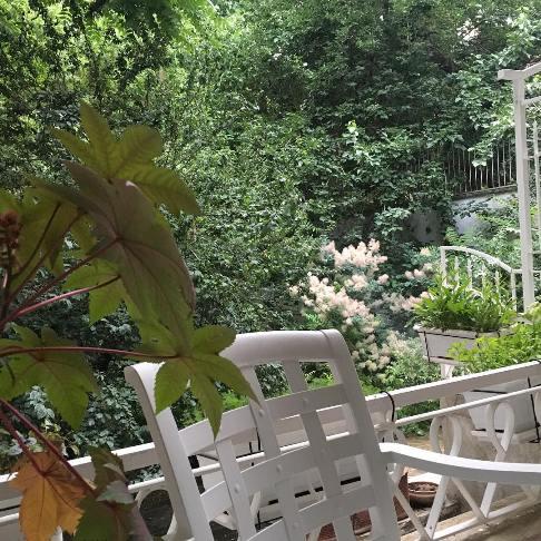 خانه نیکی کریمی در زعفرانیه