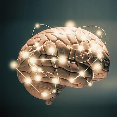 مغز شما در رابطه جنسی