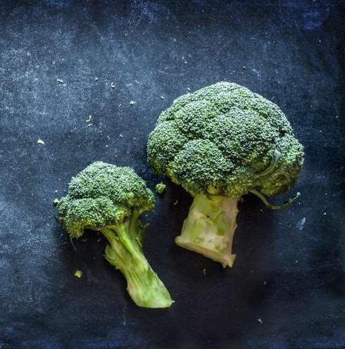 1. کلم بروکلی Broccoli